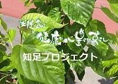 chisokupro_bn.jpg